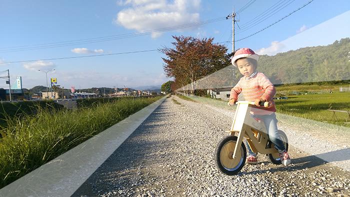 woodbike03