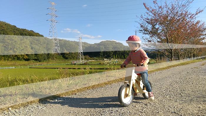 woodbike05