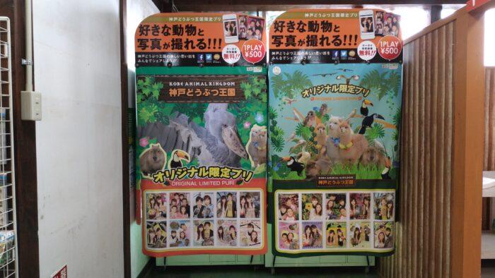 神戸どうぶつ王国の動物たち